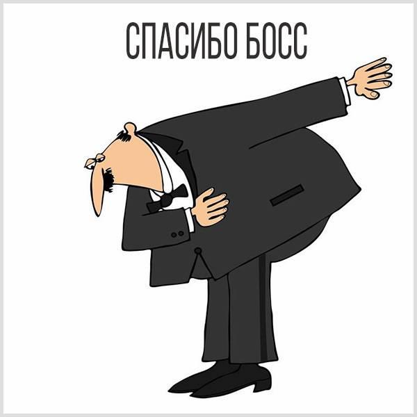 Картинка спасибо босс - скачать бесплатно на otkrytkivsem.ru