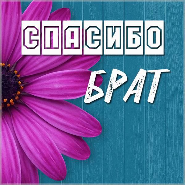 Картинка спасибо брат очень красивая - скачать бесплатно на otkrytkivsem.ru