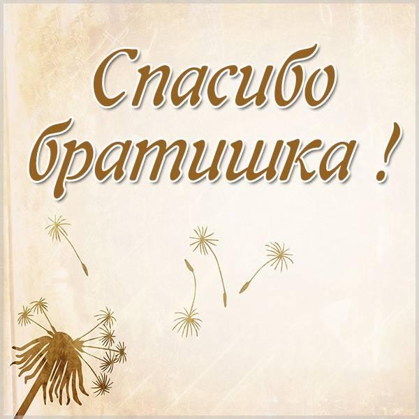 Картинка спасибо братишка красивая - скачать бесплатно на otkrytkivsem.ru