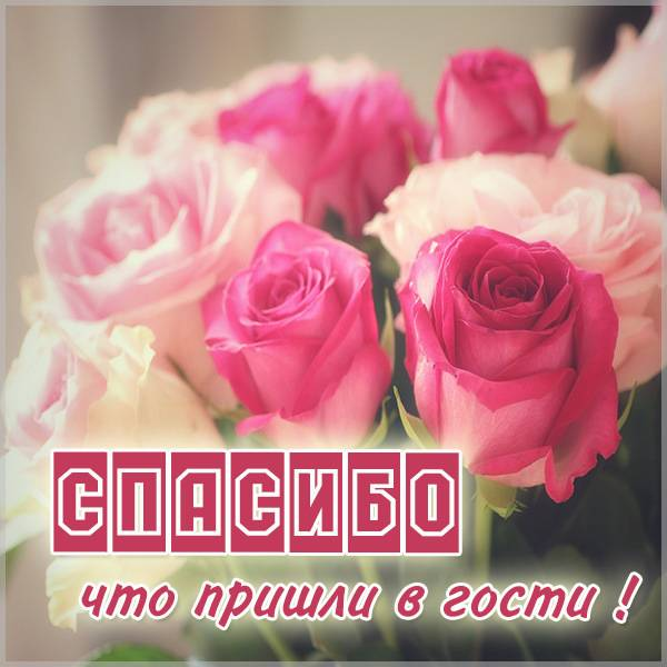 Картинка спасибо что пришли в гости - скачать бесплатно на otkrytkivsem.ru