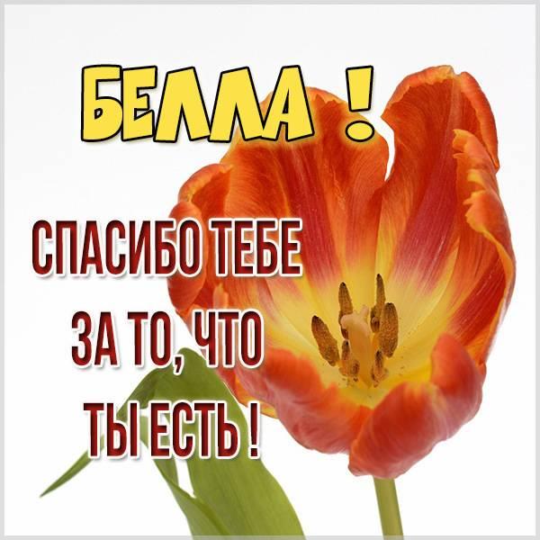 Картинка спасибо что ты есть Белла - скачать бесплатно на otkrytkivsem.ru