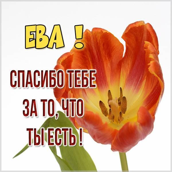 Картинка спасибо что ты есть Ева - скачать бесплатно на otkrytkivsem.ru