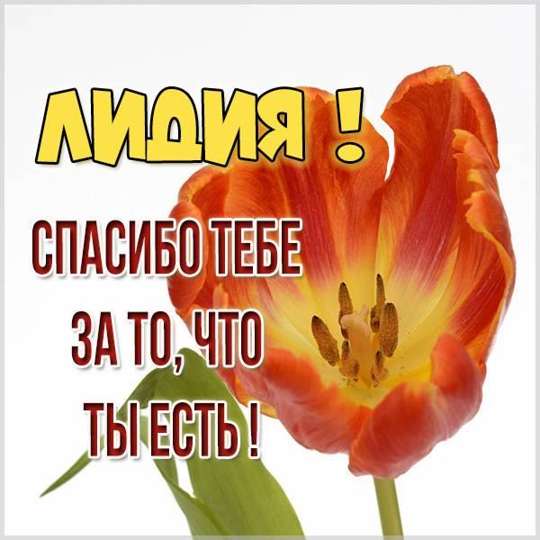 Картинка спасибо что ты есть Лидия - скачать бесплатно на otkrytkivsem.ru