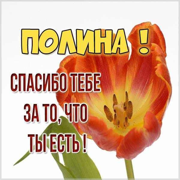 Картинка спасибо что ты есть Полина - скачать бесплатно на otkrytkivsem.ru