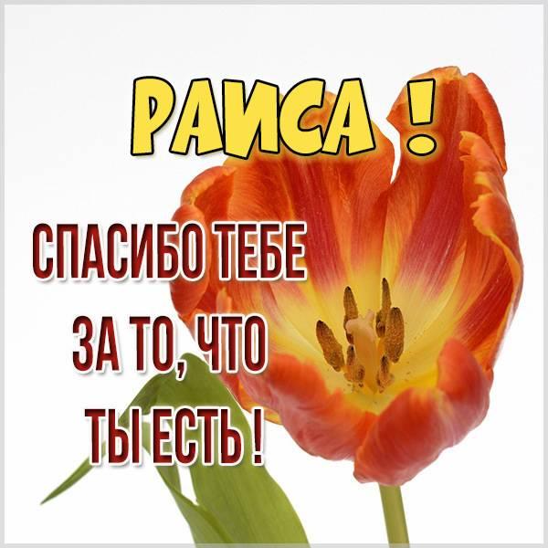Картинка спасибо что ты есть Раиса - скачать бесплатно на otkrytkivsem.ru
