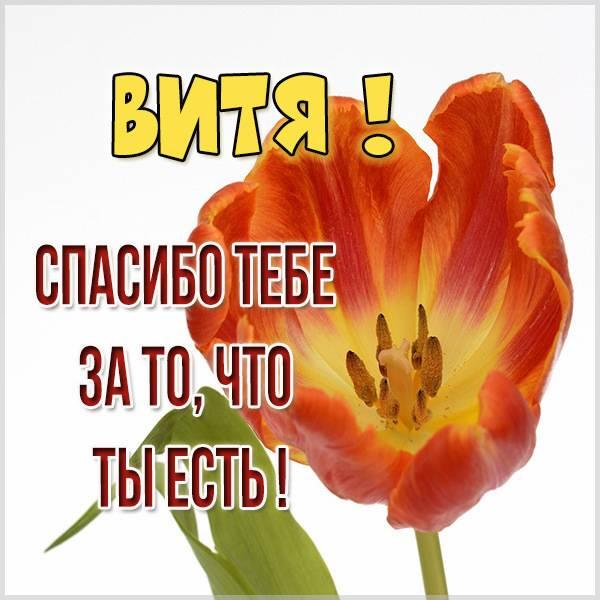 Картинка спасибо что ты есть Витя - скачать бесплатно на otkrytkivsem.ru