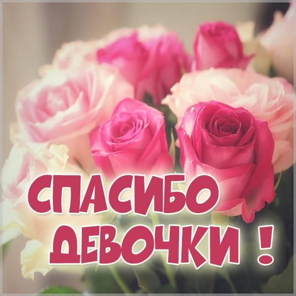 Картинка спасибо девочки - скачать бесплатно на otkrytkivsem.ru