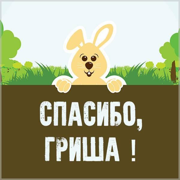 Картинка спасибо Гриша - скачать бесплатно на otkrytkivsem.ru