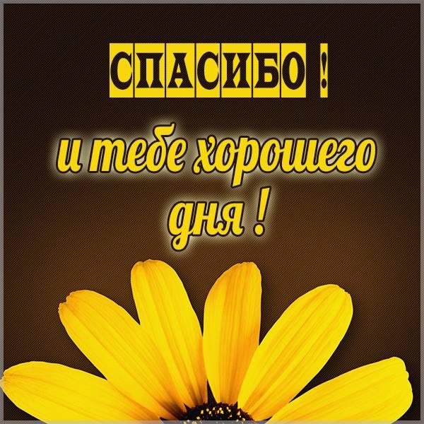 Картинка спасибо и тебе хорошего дня - скачать бесплатно на otkrytkivsem.ru