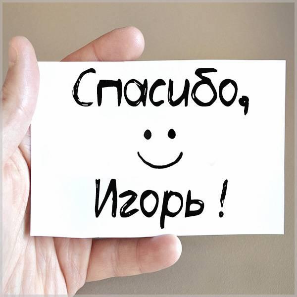 Картинка спасибо Игорь - скачать бесплатно на otkrytkivsem.ru