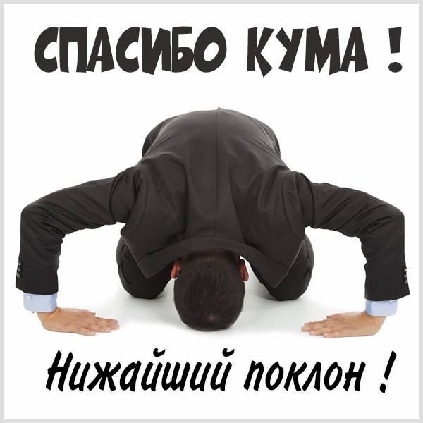 Картинка спасибо кума прикольная - скачать бесплатно на otkrytkivsem.ru