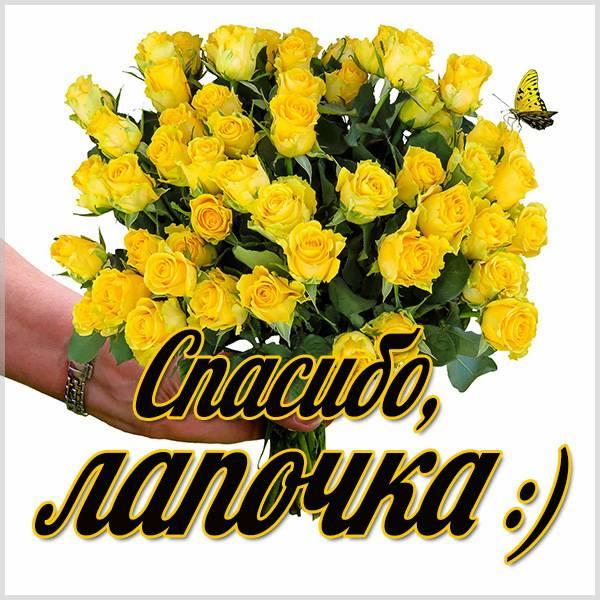 Картинка спасибо лапочка - скачать бесплатно на otkrytkivsem.ru