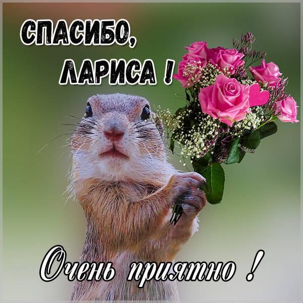 Картинка спасибо Лариса очень приятно - скачать бесплатно на otkrytkivsem.ru