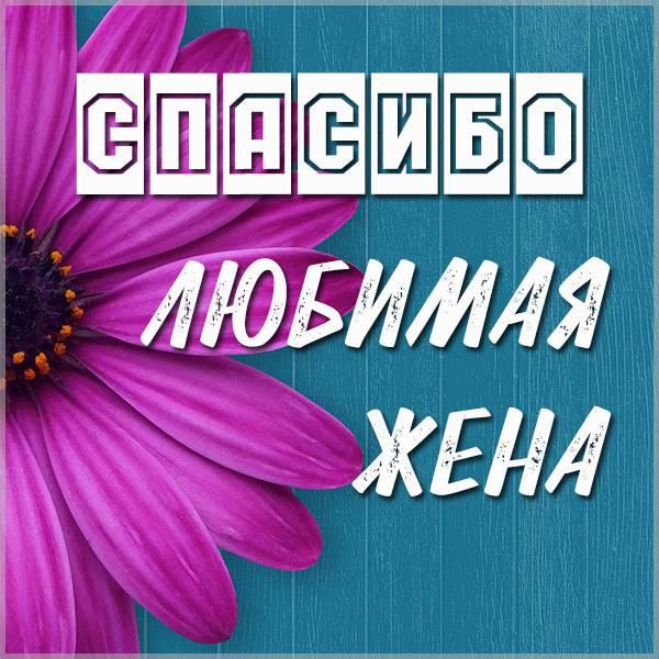 Картинка спасибо любимая жена - скачать бесплатно на otkrytkivsem.ru