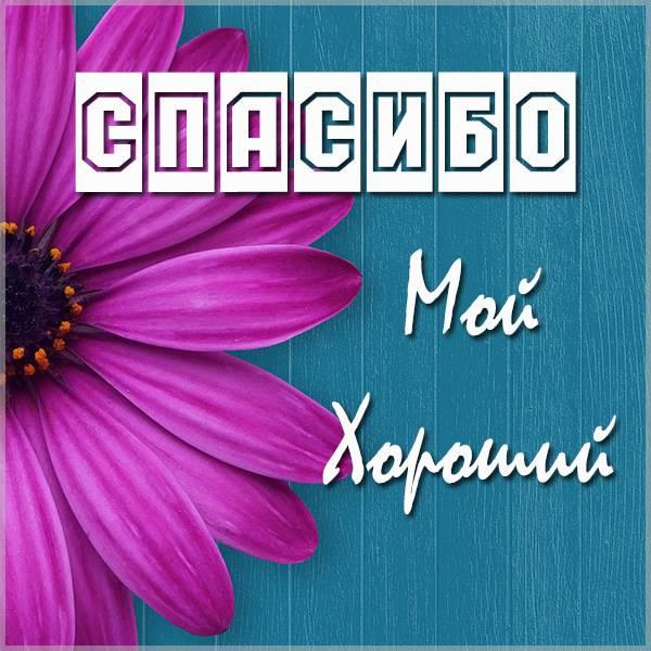 Картинка спасибо мой хороший - скачать бесплатно на otkrytkivsem.ru