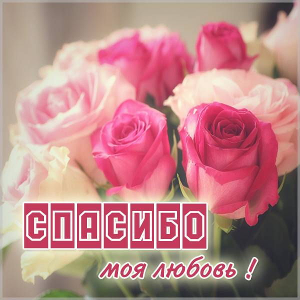 Картинка спасибо моя любовь - скачать бесплатно на otkrytkivsem.ru