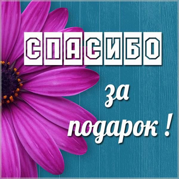 Картинка спасибо мужчине за подарок - скачать бесплатно на otkrytkivsem.ru