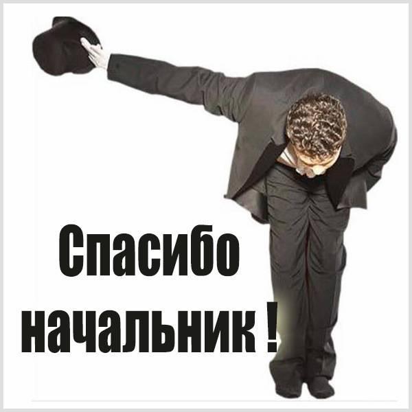 Картинка спасибо начальник - скачать бесплатно на otkrytkivsem.ru