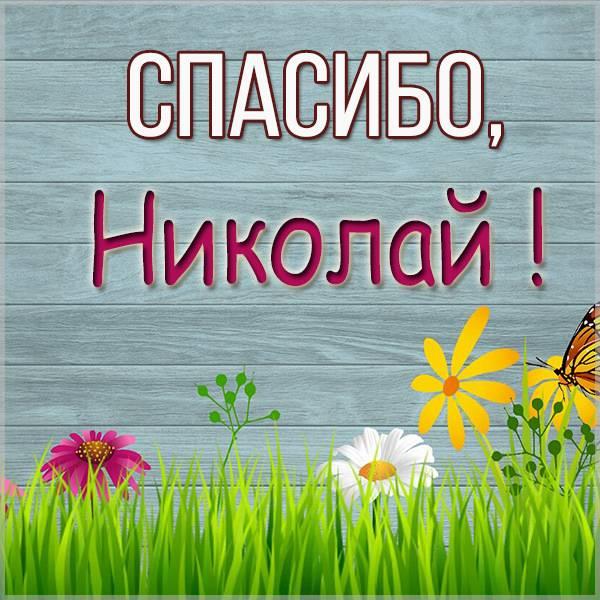 Картинка спасибо Николай - скачать бесплатно на otkrytkivsem.ru