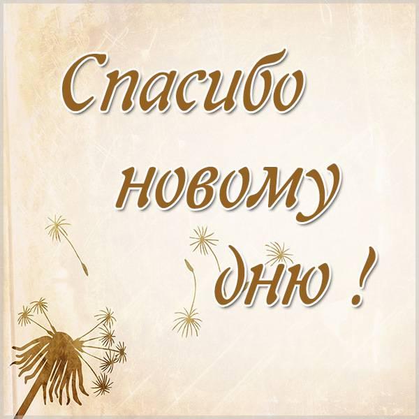 Картинка спасибо новому дню - скачать бесплатно на otkrytkivsem.ru