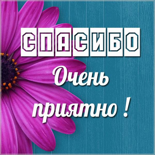 Картинка спасибо очень приятно мужчине - скачать бесплатно на otkrytkivsem.ru