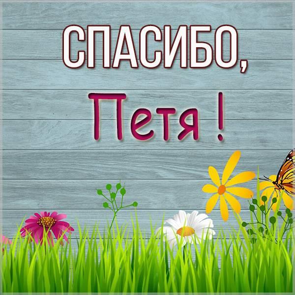 Картинка спасибо Петя - скачать бесплатно на otkrytkivsem.ru
