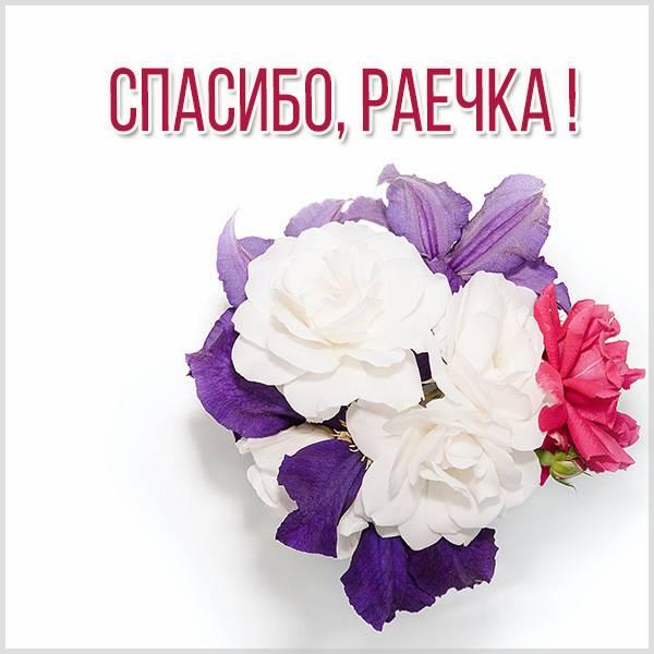 Картинка спасибо Раечка - скачать бесплатно на otkrytkivsem.ru