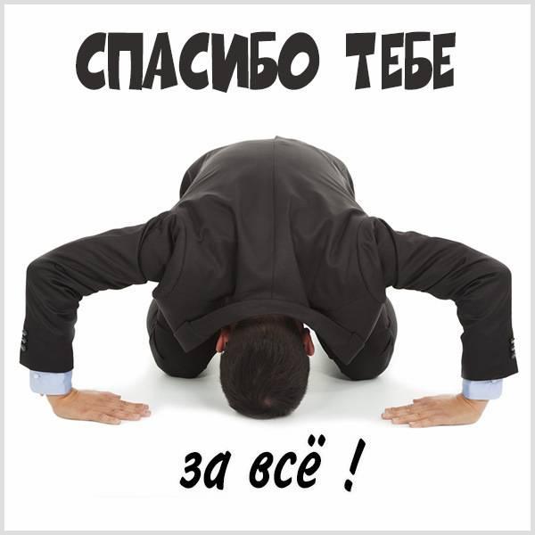Картинка спасибо тебе за все - скачать бесплатно на otkrytkivsem.ru