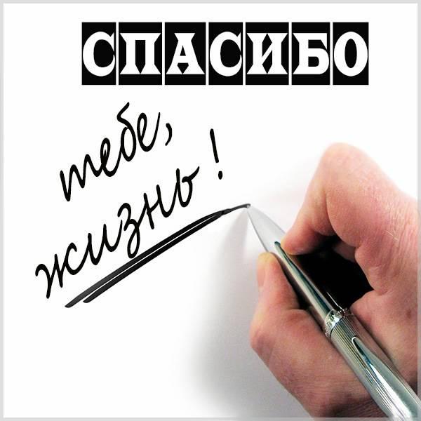 Картинка спасибо тебе жизнь - скачать бесплатно на otkrytkivsem.ru