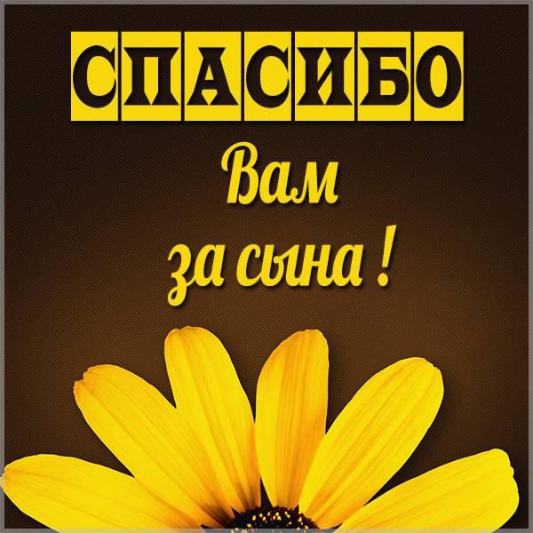 Картинка спасибо вам за сына - скачать бесплатно на otkrytkivsem.ru