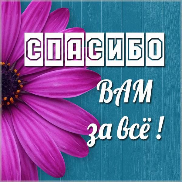 Картинка спасибо вам за все - скачать бесплатно на otkrytkivsem.ru