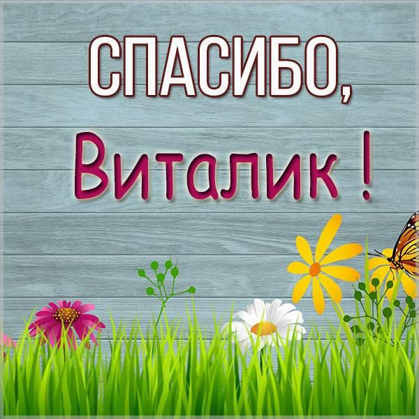Картинка спасибо Виталик - скачать бесплатно на otkrytkivsem.ru