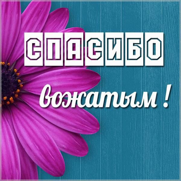 Картинка спасибо вожатым - скачать бесплатно на otkrytkivsem.ru