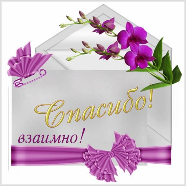 Картинка спасибо взаимно - скачать бесплатно на otkrytkivsem.ru