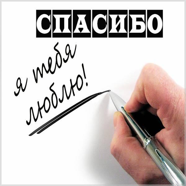 Картинка спасибо я тебя люблю - скачать бесплатно на otkrytkivsem.ru