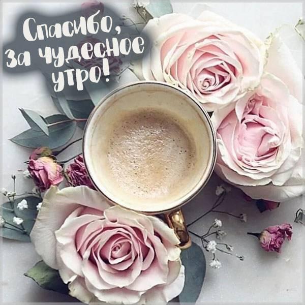 Картинка спасибо за чудесное утро - скачать бесплатно на otkrytkivsem.ru