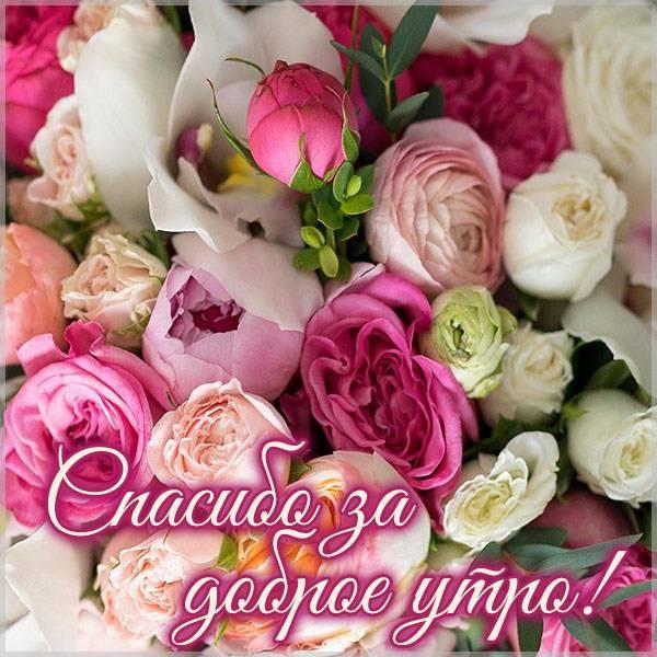 Картинка спасибо за доброе утро красивая - скачать бесплатно на otkrytkivsem.ru