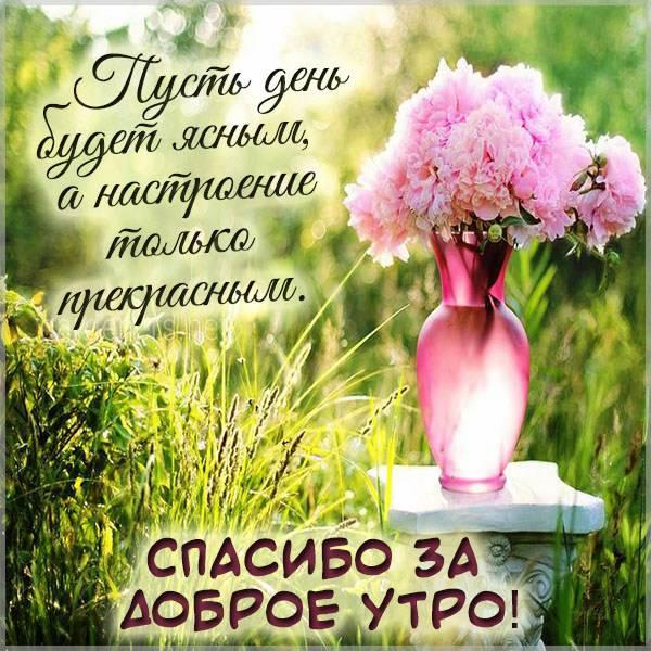 Картинка спасибо за доброе утро - скачать бесплатно на otkrytkivsem.ru