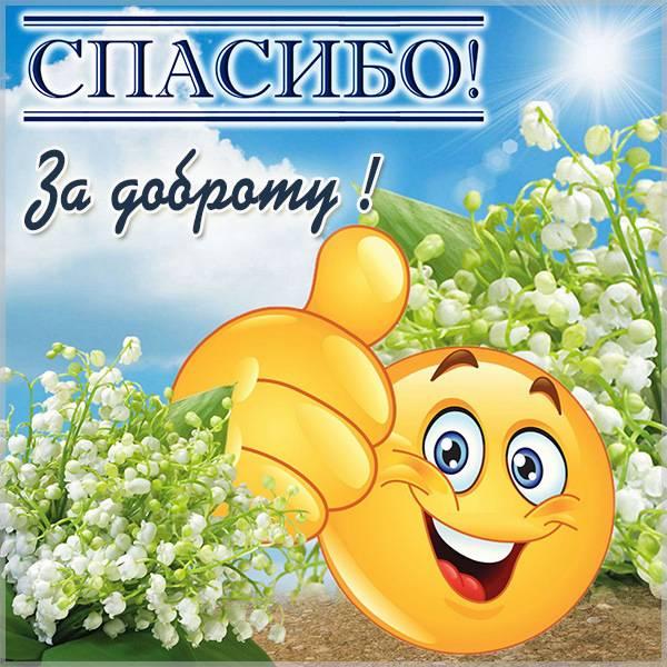 Картинка спасибо за доброту - скачать бесплатно на otkrytkivsem.ru