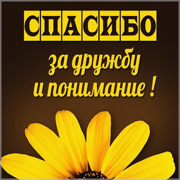 Картинка спасибо за дружбу и понимание - скачать бесплатно на otkrytkivsem.ru