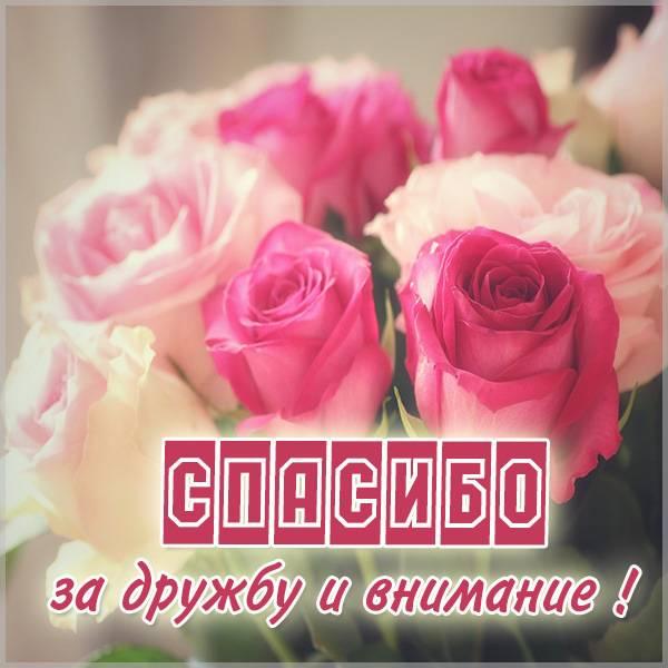 Картинка спасибо за дружбу и внимание - скачать бесплатно на otkrytkivsem.ru