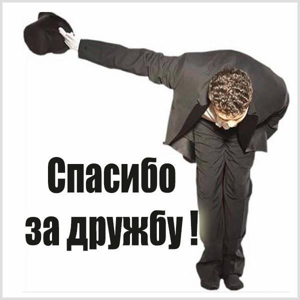 Картинка спасибо за дружбу - скачать бесплатно на otkrytkivsem.ru