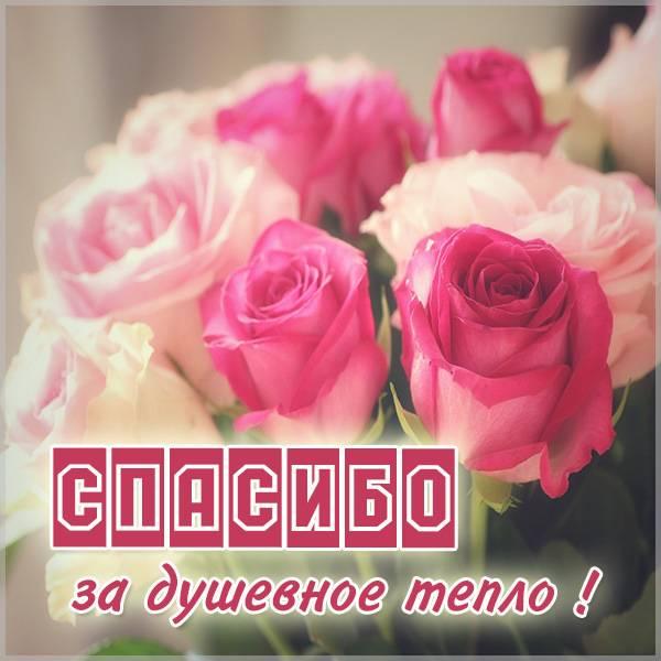 Картинка спасибо за душевное тепло - скачать бесплатно на otkrytkivsem.ru