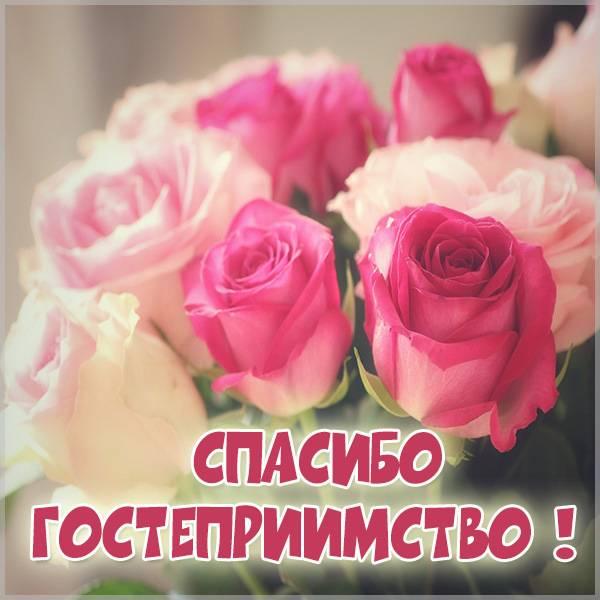 Картинка спасибо за гостеприимство красивая - скачать бесплатно на otkrytkivsem.ru