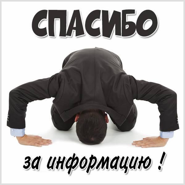 Картинка спасибо за информацию - скачать бесплатно на otkrytkivsem.ru