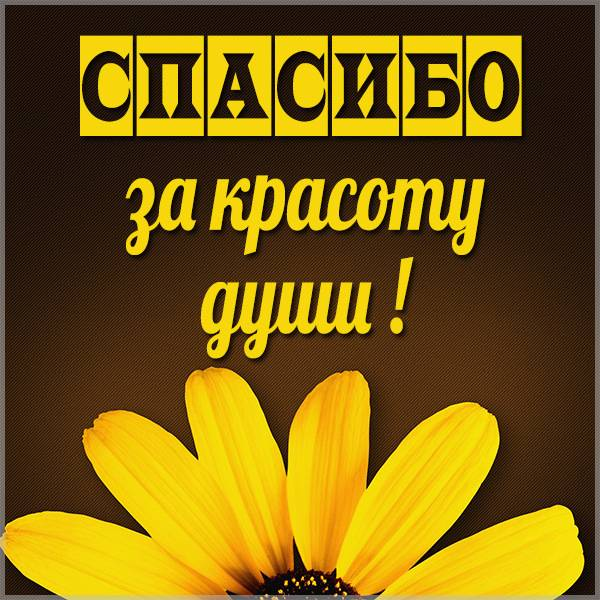 Картинка спасибо за красоту души - скачать бесплатно на otkrytkivsem.ru