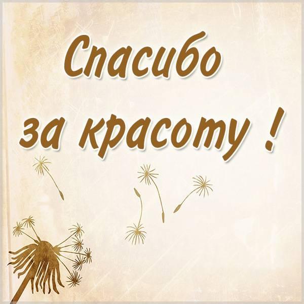 Картинка спасибо за красоту красивая - скачать бесплатно на otkrytkivsem.ru