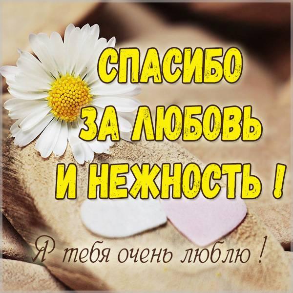 Картинка спасибо за любовь и нежность - скачать бесплатно на otkrytkivsem.ru