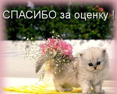 Картинка спасибо за оценку - скачать бесплатно на otkrytkivsem.ru