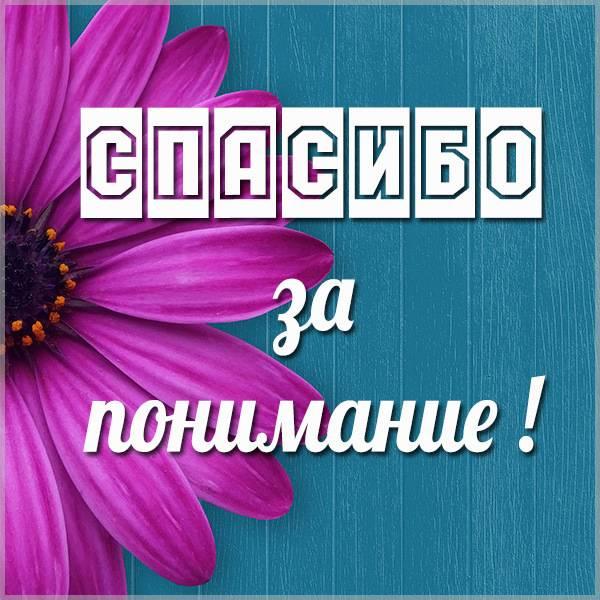 Картинка спасибо за понимание - скачать бесплатно на otkrytkivsem.ru